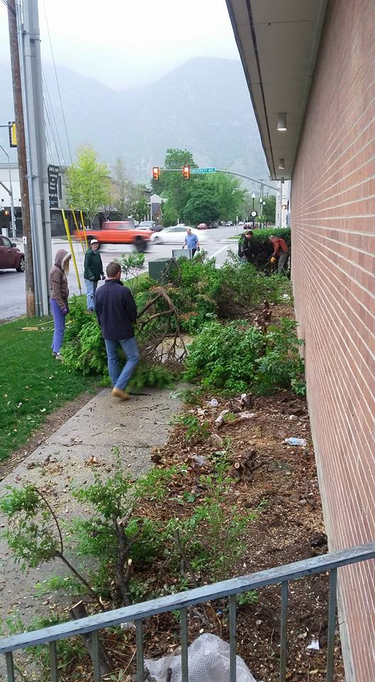 Removal of the old shrubs on a rainy Saturday morning with assistance from friends of the church.
